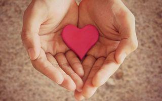 Фото бесплатно руки, сердце, розовое
