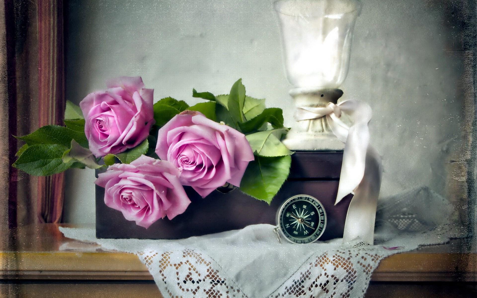 цветы, розы, подарок