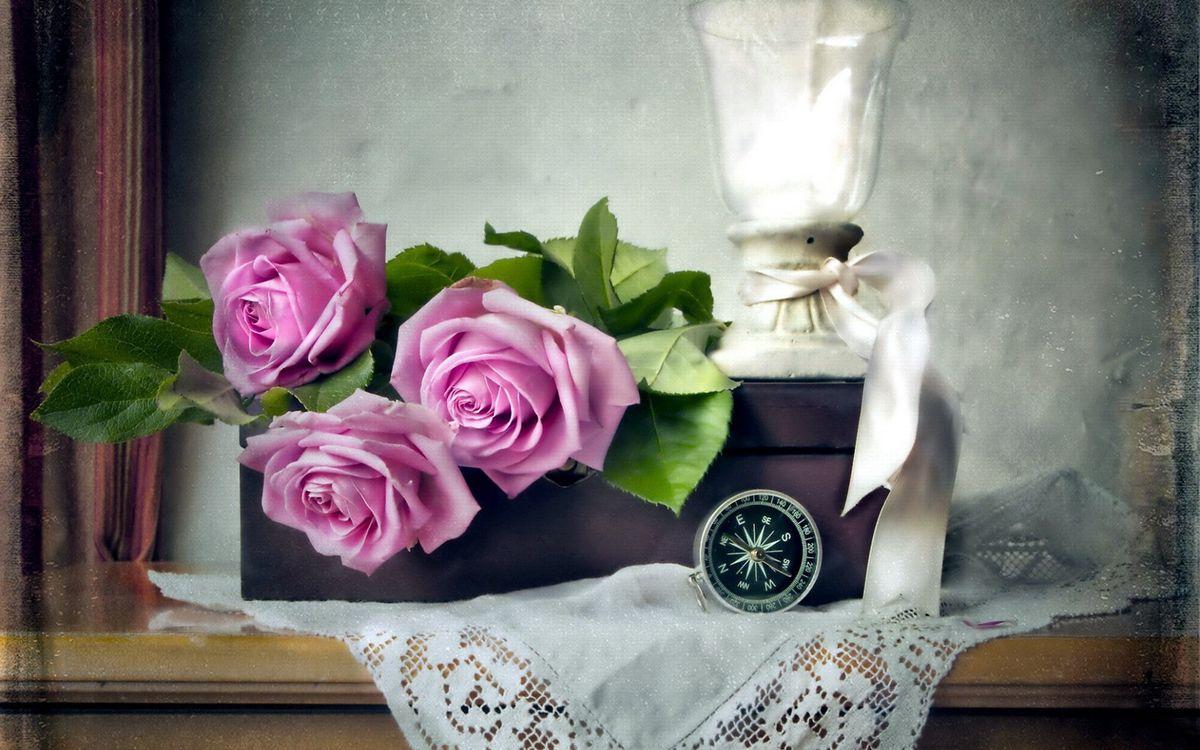 Фото бесплатно цветы, розы, подарок - на рабочий стол