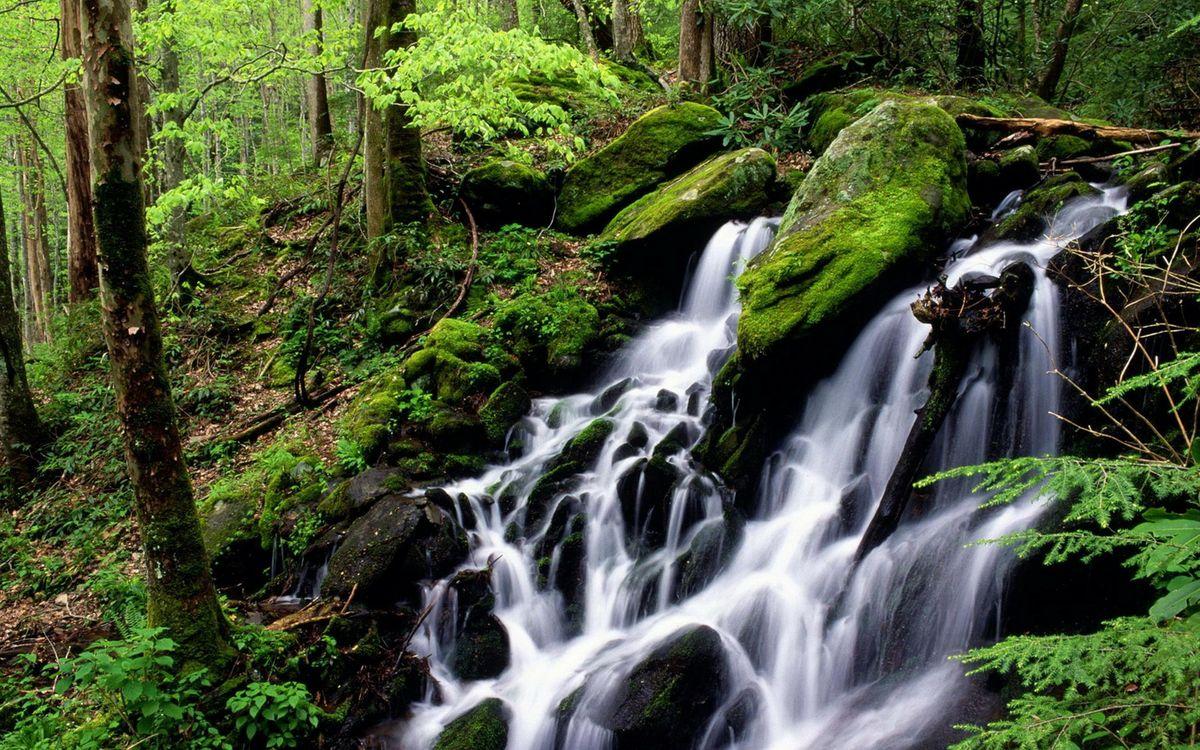 Фото бесплатно водопад, вода, мох - на рабочий стол