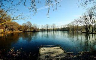 Бесплатные фото осень,пруд,мостик,деревья,ветви,трава,небо