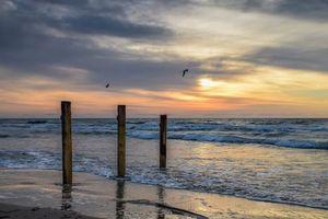 Бесплатные фото закат,море,берег,чайки,пляж,пейзаж