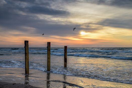 Фото бесплатно пейзаж, Чайки, берег