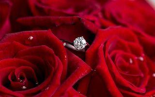 Бесплатные фото розы,лепестки,красные,кольцо,бриллиант