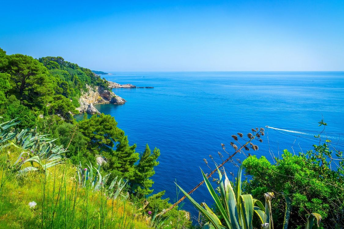Фото бесплатно Хорватия, море, берег, деревья, пейзаж, пейзажи