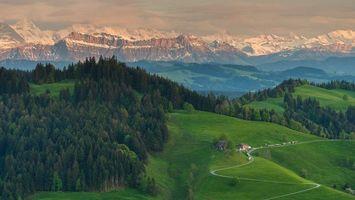 Обои Альпы, Берн, Швейцария, горы, холмы, поля, деревья, пейзаж