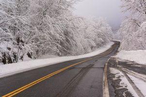 Бесплатные фото зима,дорога,деревья,пейзаж
