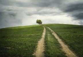 Фото бесплатно поле, холм, дорога