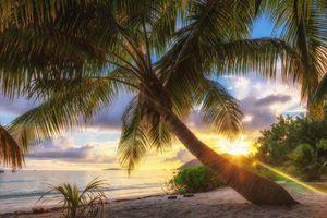 Бесплатные фото закат,море,пальмы,пляж