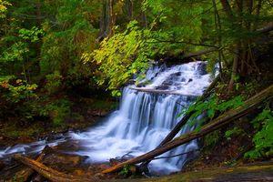 Бесплатные фото осень,река,лес,деревья,водопад,природа