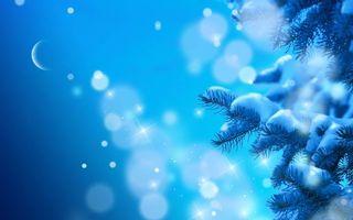Фото бесплатно Снежные ветки, луна, блики, еловые ветки, снег