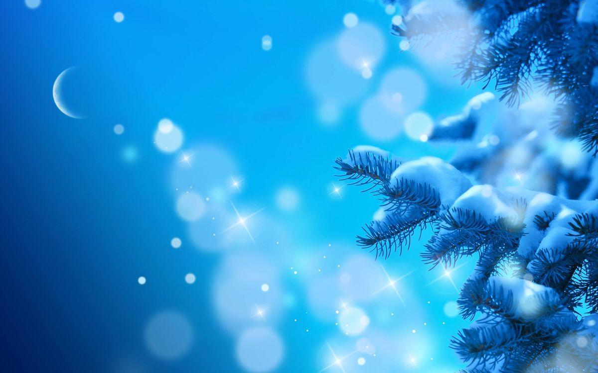 Обои Снежные ветки, луна, блики, еловые ветки, снег на телефон | картинки новый год