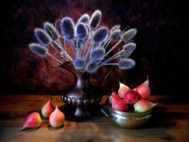 Бесплатные фото ваза,растения,груши,натюрморт