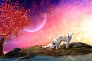 Фото бесплатно волки, 3d, art