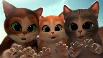Бесплатные фото кот в сапогах,три чертенка
