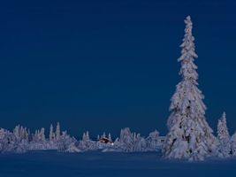 Фото бесплатно сугробы, домик, снег