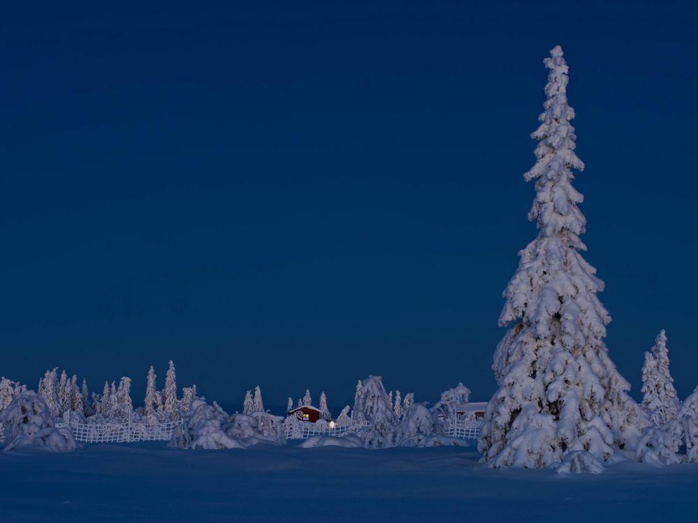 Фото бесплатно зима, снег, сугробы, деревья, домик, пейзаж, пейзажи