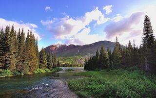 Фото бесплатно река, горы, елки