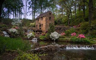 Бесплатные фото река,мельница,деревья,пейзаж