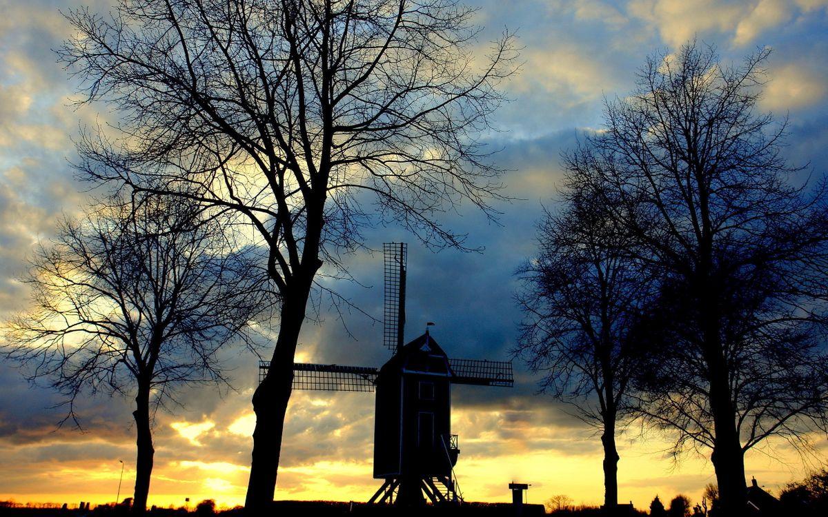Фото бесплатно вечер, ветряная мельница, деревья - на рабочий стол
