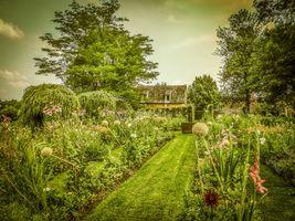 Бесплатные фото сад,дом,деревья,цветы,пейзаж