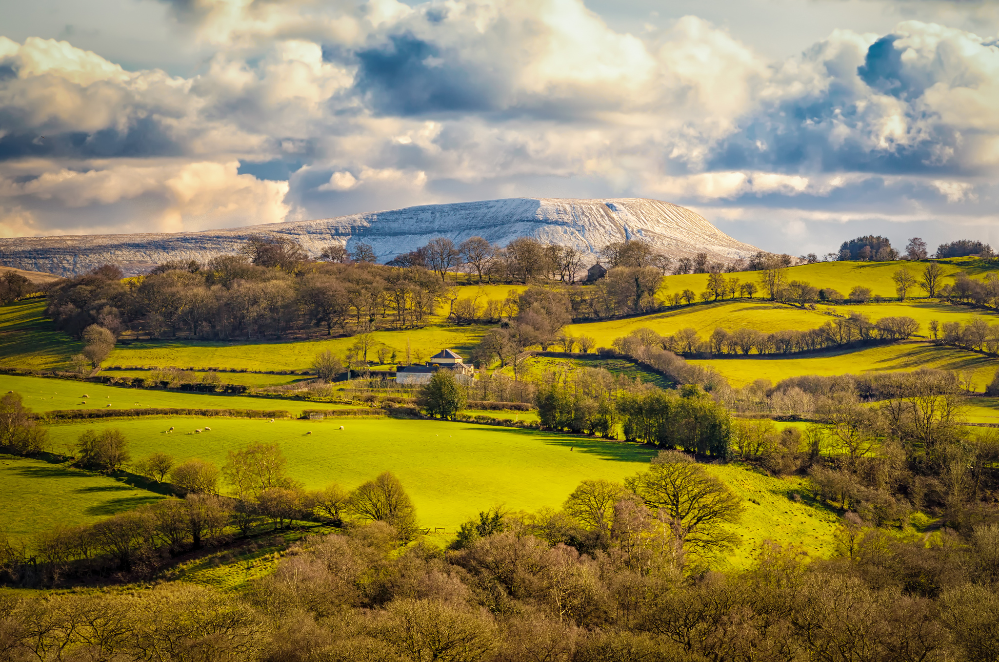 Южный Уэльс, Великобритания, поля