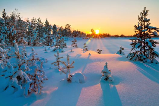 Picture about snow, winter