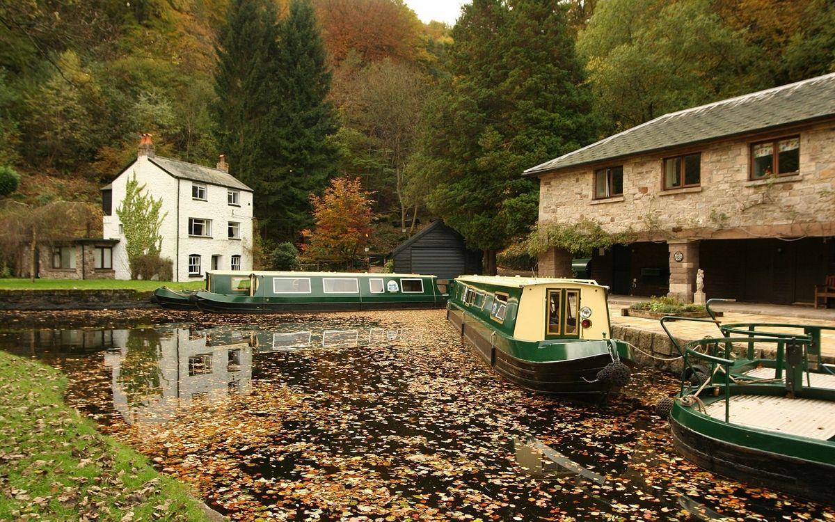 Фото бесплатно река, канал, листва - на рабочий стол
