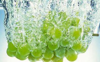 Бесплатные фото виноград,зеленый,ягода,гроздь,вода,пузырьки