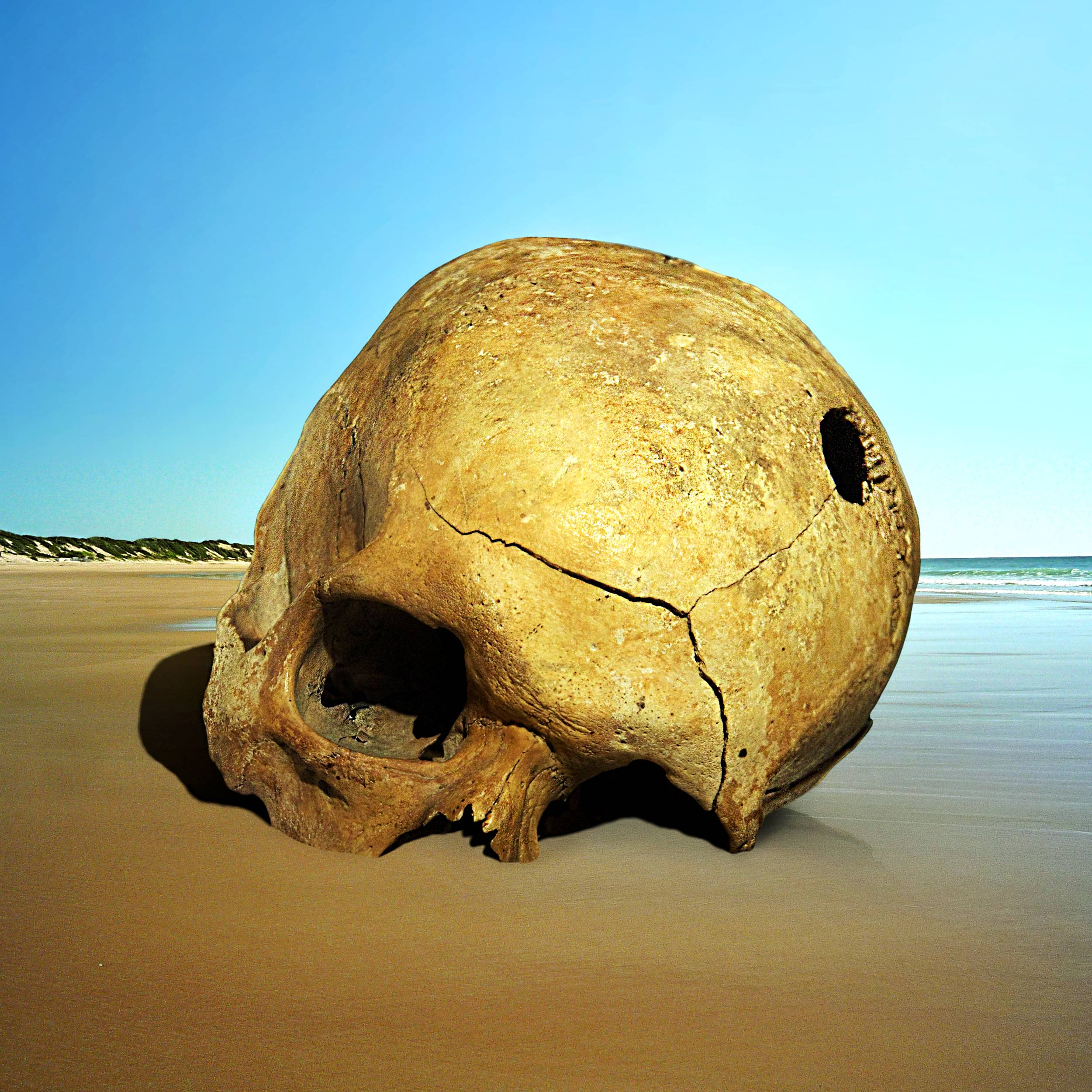 море, берег, череп