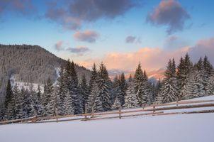 Заставки закат, зима, тропинка