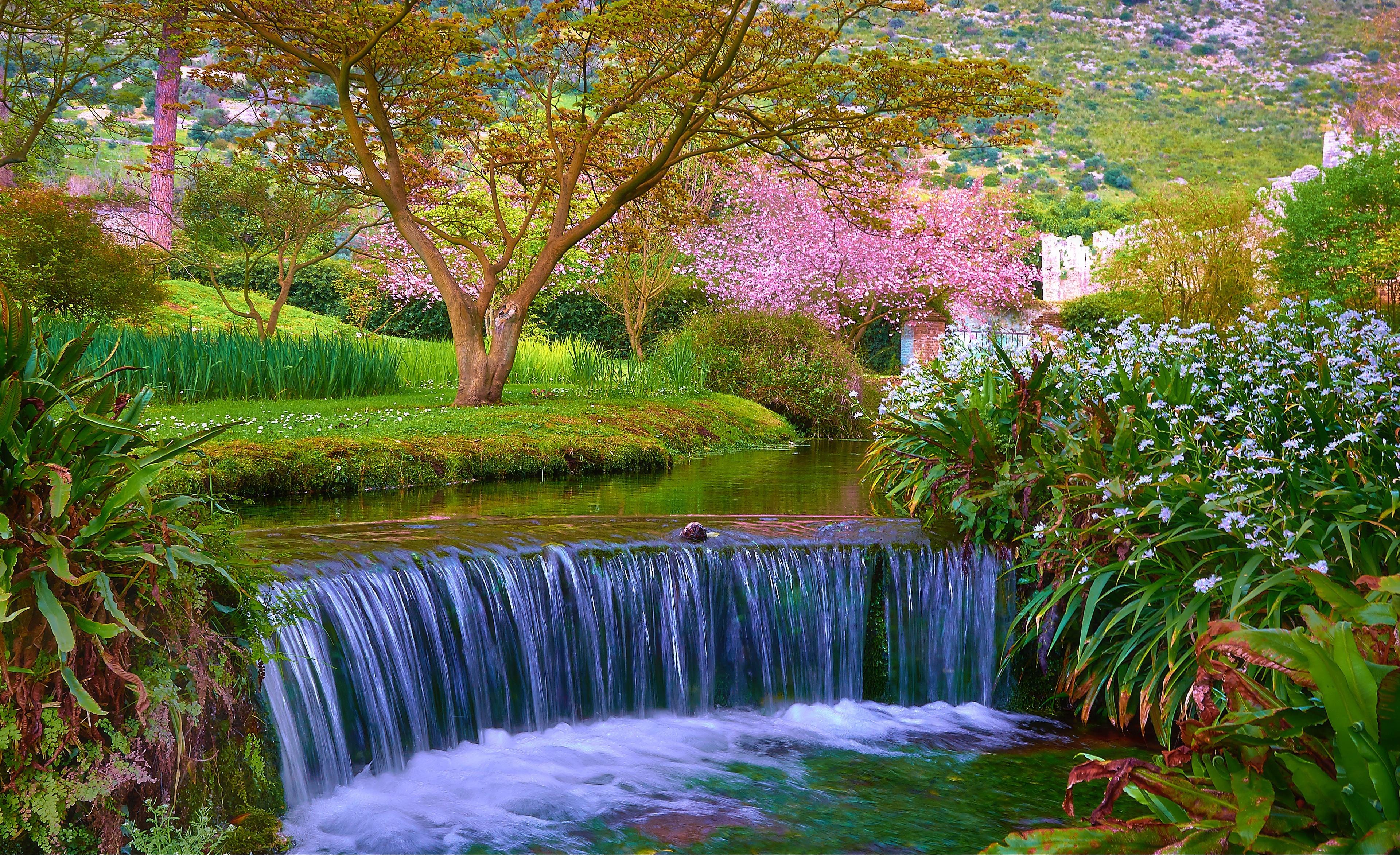 водопад среди деревьев  № 373567 бесплатно