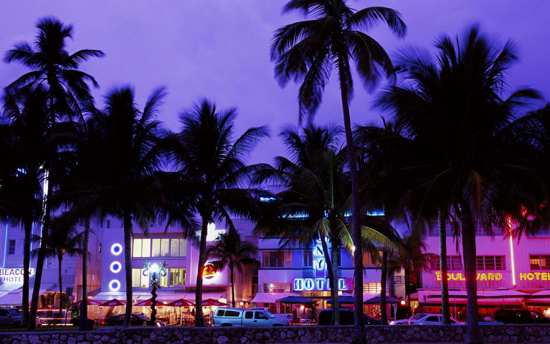 Отель апартаменты пальмы  № 3705563 загрузить