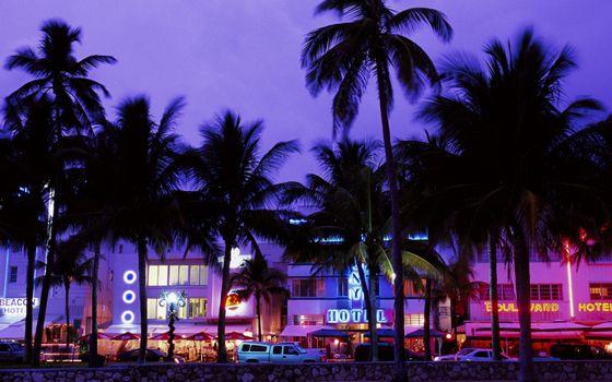 Бесплатные фото вечер,здания,отель,вывеска,подсветка,улица,машины,пальмы