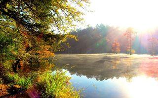 Бесплатные фото осень,река,отражение,трава,деревья,листва,цветная