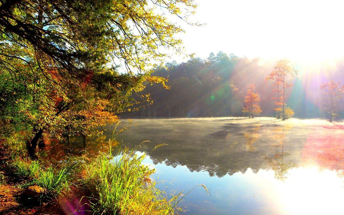 Обои осень, река, отражение картинки на телефон