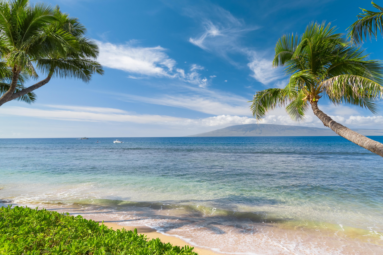 обои остров, море, океан, берег картинки фото
