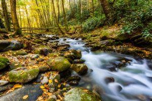 Обои Грейт-Смоки-Национальный парк, штат Теннесси, речка, лес, камни, деревья, природа