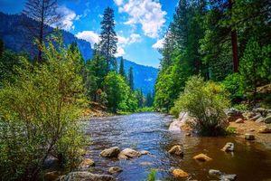 Бесплатные фото Йосемитский национальный парк,Yosemite National Park,Калифорния,США,река,лес,деревья