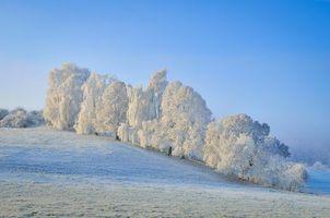 Фото бесплатно зима, иней, холмы