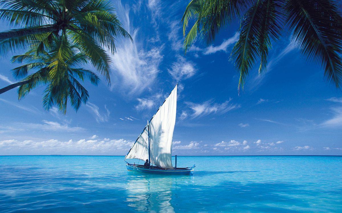 Фото бесплатно парусник, лодка, океан, остров, пальмы, пейзажи