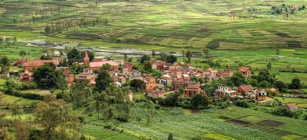 Фото бесплатно мадагаскар, африка, поля, дома, деревья, пейзаж