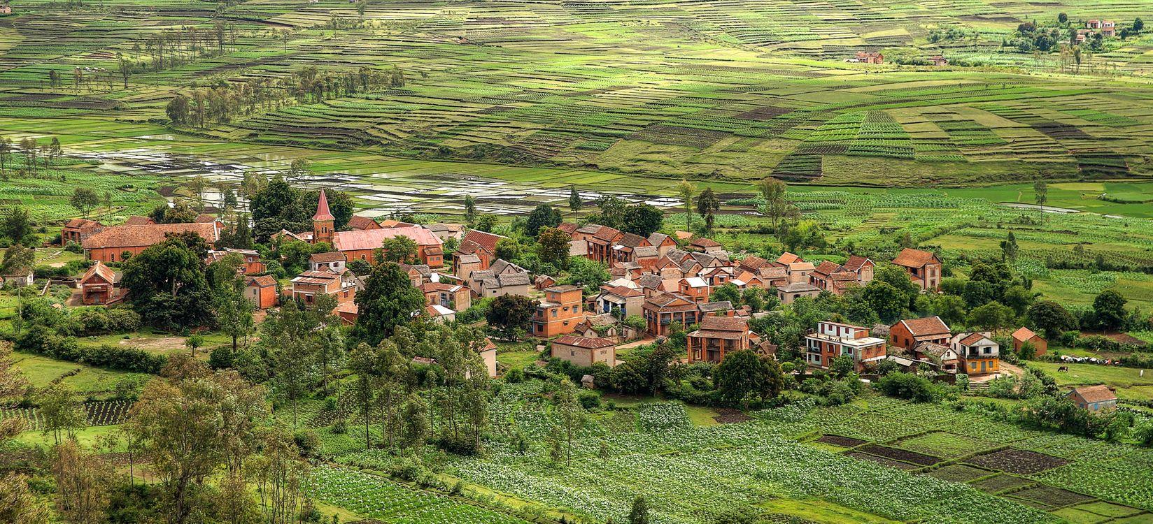 Фото бесплатно мадагаскар, африка, поля, дома, деревья, пейзаж, пейзажи
