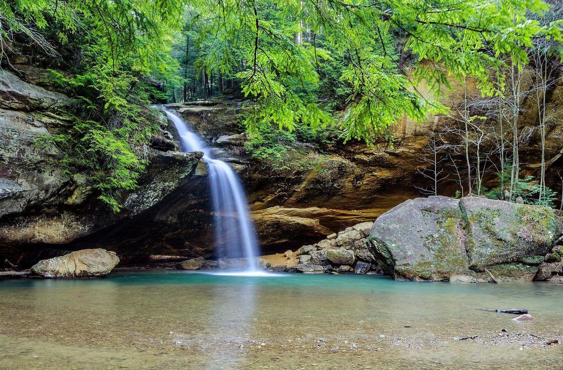 Фото бесплатно Hocking Hills State Park, Ohio, лес - на рабочий стол