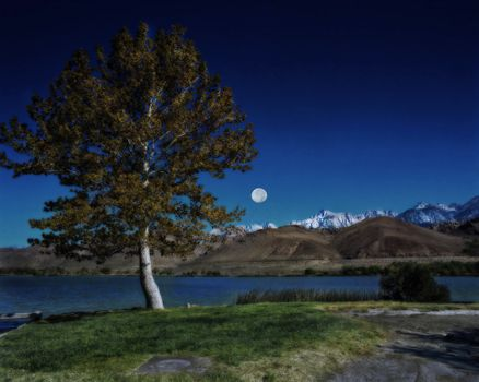 Бесплатные фото Лунный свет,Луна,Sequoia National Park,Северная Калифорния