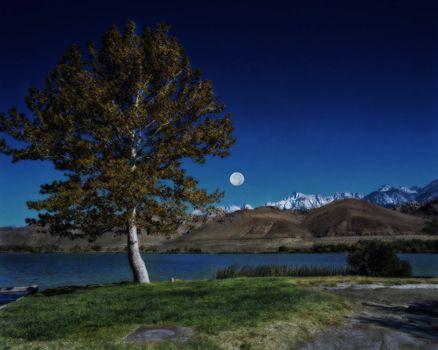 Фото бесплатно Лунный свет, Луна, Sequoia National Park
