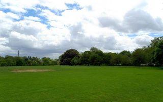 Бесплатные фото поле,трава,газон,деревья,небо,облака