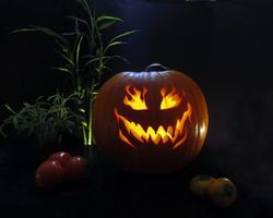 Бесплатные фото Happy Halloween,Хэллоуин,праздник,тыква