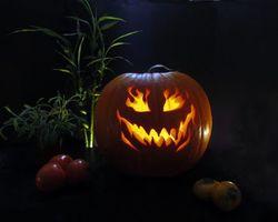 Заставки Happy Halloween, Хэллоуин, праздник