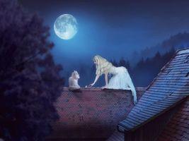 Бесплатные фото ночь,девушка,кошка,фантазия